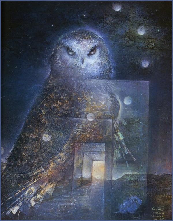 past-life-owl